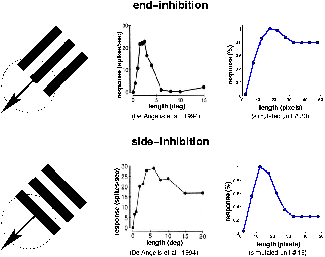 SFA units and