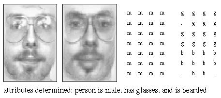 analyzed face (22 kB)