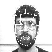 face graph (10 kB)