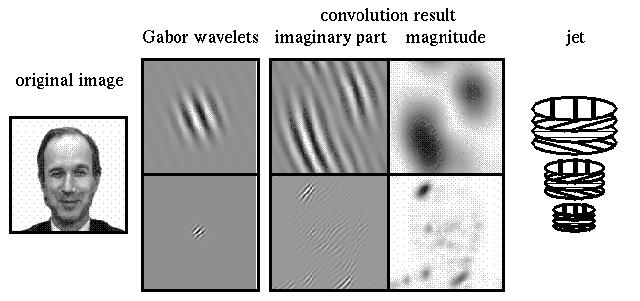 Gabor-wavelet transform and jet (33 kB)