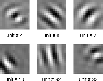 optimal stimuli of quadratic forms modeling complex cells (6